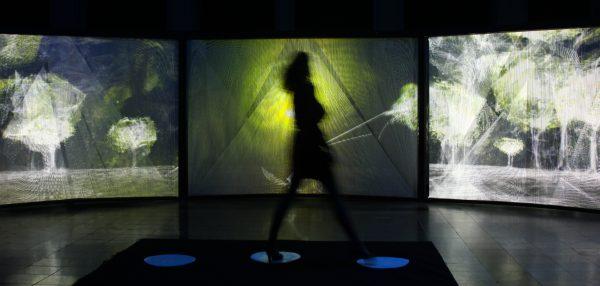 One Beat One Tree par Naziha Mestaoui (Electronic Shadow)
